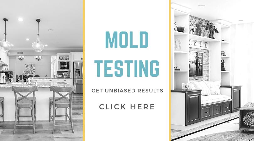 Mold Testing